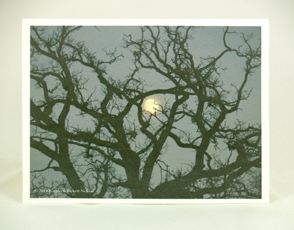 Full Moon Rising Over Oaks note card